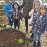 В очакване на пролетта - нашата биоградинка