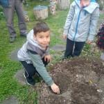 Малки градинари